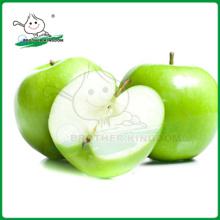 Frischer grüner Apfel / Grüner Galaapfel / Grüner Smith
