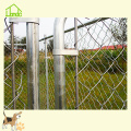 Hot Chain Link Hondenkennel
