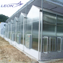 LEON series 2016 Best-Selling garden agricultural greenhouse/sun room/ film greenhouse