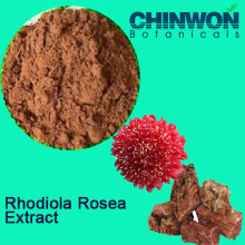 Melhore a Imunidade Rhodiola Rosea Extract