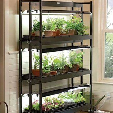 Indoor MicroGreen Growing Hydroponic System