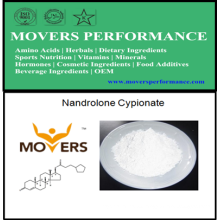 Esteroid Nandrolone Cypionate in Pharmaceuticals