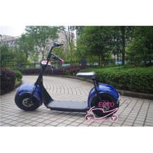 Vélo électrique à deux roues Citycoco à grande roue de 9,5 pouces (scooter électrique harley)