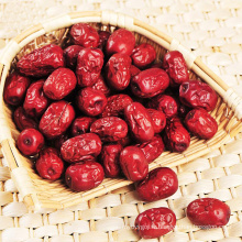 100% naturel Jujube séché date rouge chinois date rouge fournisseur