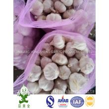 Mesh Bag 10kgs Net Weight Fresh Normal White Garlic