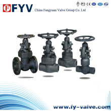 API Forged Steel Gate Valve