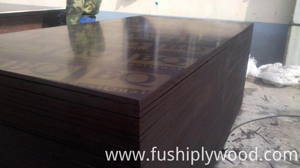18mm Film Faced Plywood Qatar for Construction