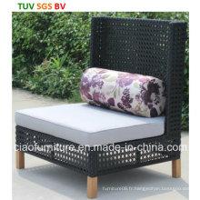 Chaise de jardin de loisirs avec coussin (CF1366C)