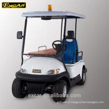 Ambulance électrique de voiturette de golf d'ambulance de véhicule de 2 places à vendre