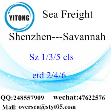 Pelabuhan Shenzhen LCL Consolidation To Savannah