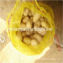 Prix frais de la pomme de terre par tonne / importateurs de pommes de terre frappés dans les importateurs de dubai / pommes de terre / importateur de pommes de terre en Malaisie