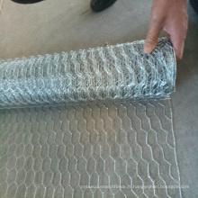 maille hexagonale de couleur enduite par PVC / filet galvanisé de volaille / maille hexagonale galvanisée