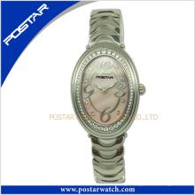 Relógio famoso da promoção de quartzo do movimento do Japão da marca do Ce