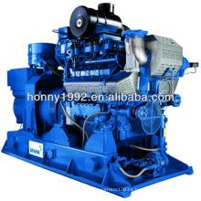 Deutschland MWM Gas Engine Generator Turnkey Power Plant