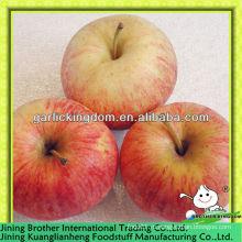 2013 новый сезон свежий красный гала яблоко