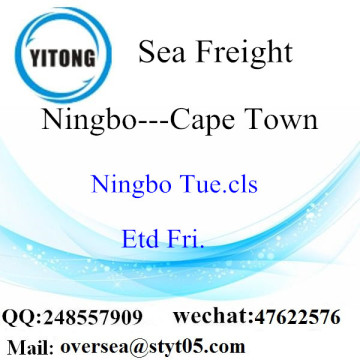 Ningbo Port LCL Consolidation To Cape Town