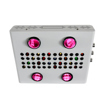 600W serie Noas COB LED Grow Light