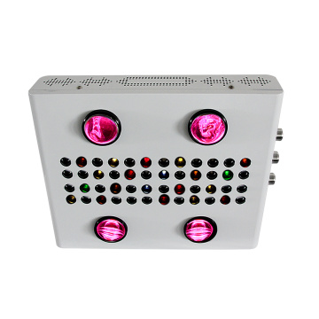 600W Noas seri COB LED Grow Light