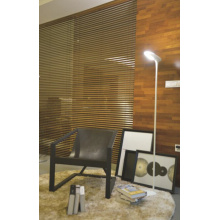 Lámpara de pie moderna de la lámpara de la galería (3001F-LED)