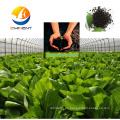 Fertilizante de alta calidad algas líquidas fertilizante orgánico