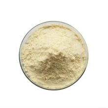 Buy online active ingredients Flavor enzyme powder