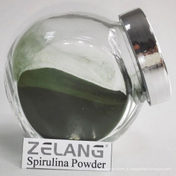Fabrication de poudre de spiruline naturelle non aromatisée
