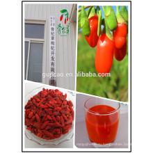 2016 Новый урожай ягоды годжи свежие ягоды годжи сушеные ягоды годжи органические ягоды годжи низкая цена ягоды годжи