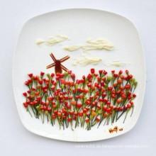 Dinner Plate (CY-D02)