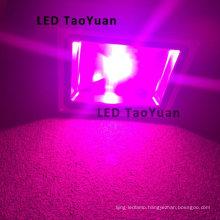 LED Grow Light in LED Aquarium Light 50W