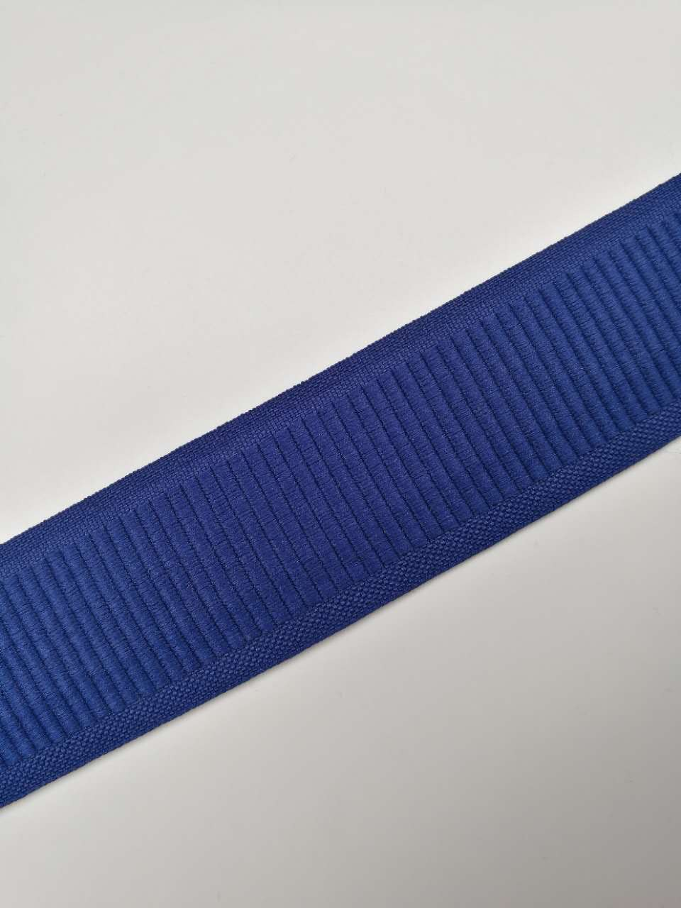 Polyester Webbing Tape (6)