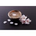 Sake aus China Dalian Tianpeng mit ausgezeichneter Qualität