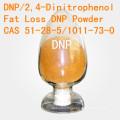 DNP pour la grosse perte 2, 4-Dinitrophenol CAS 51-28-5 Poudre stéroïde DNP de perte de poids de grande pureté DNP