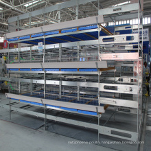 Poultry Chicken Farm Equipment H Type Galvanized Broiler Cage