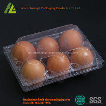 Transparent plastic chicken eggs trays