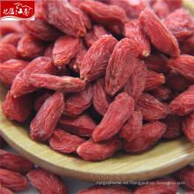 Nueva fruta famosa de la fruta de goji de la llegada en China