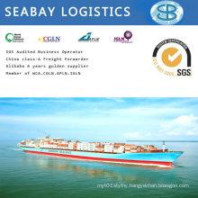 Shipping Agent in Guangzhou, Shenzhen, Foshan