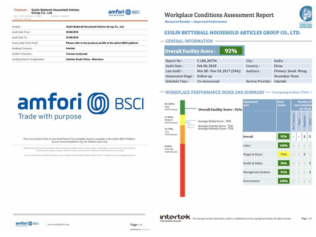 2018 BSCI Report