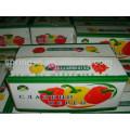 Farbe Paprika Marktpreis süße runde Pfeffer frische Kirsche Paprika