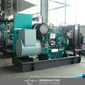 Générateur de puissance diesel de la Chine 35kw yangchai avec le couvert silencieux ou imperméable