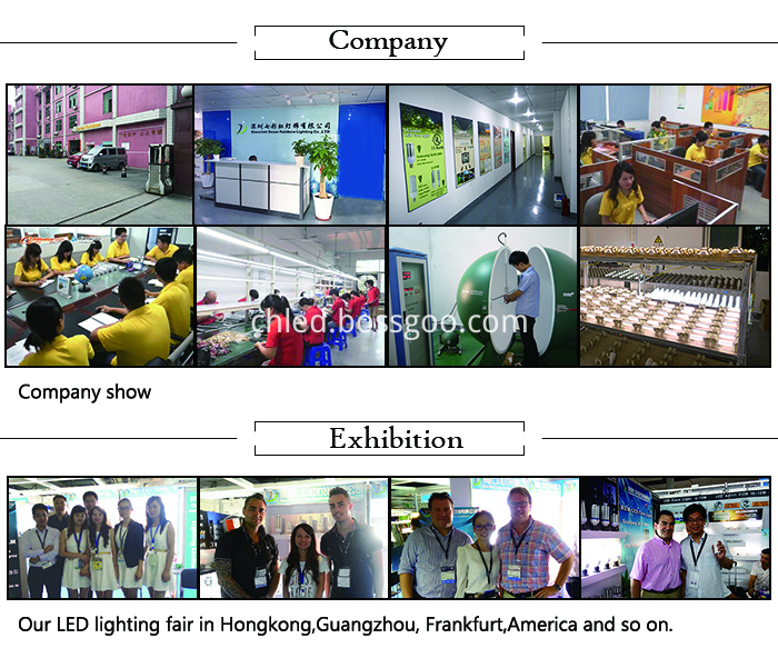 company of led corn light