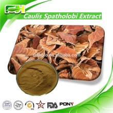Wholesale Lower Price 100% Natural Caulis Spatholobi Extract