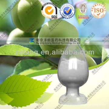 Planta de acetona oleanólica ácida