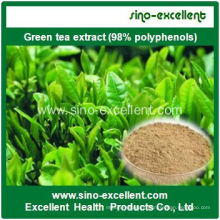 Green Tea Extract Plant Extract EGCG