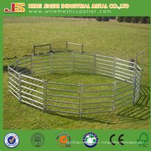 Panneau de bétail lourd de 1,6 * 2,1 m, panneau de Corral, panneau de clôture de bovins