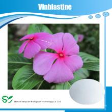 Hochwertige Vinblastine 865-21-4 auf Lager schnelle Lieferung guter Lieferant