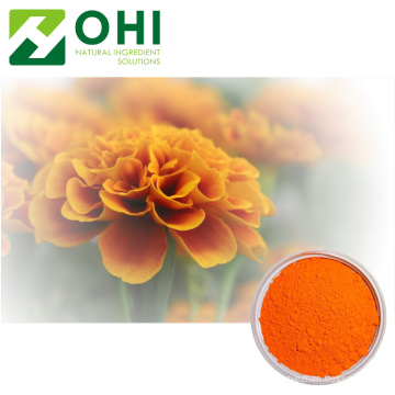 Marigold Extract Calendula Officinalis 5% Lutein Xanthophyll