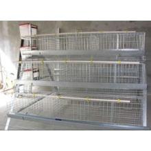 Cage à oiseaux chinoise galvanisée professionnelle pour ferme avicole