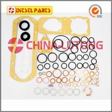 Repair Kits 2 417 010 001(P3000) for POCHETTES DE JOINTS GASKET KITS VE Pump PE...6P...-S3000