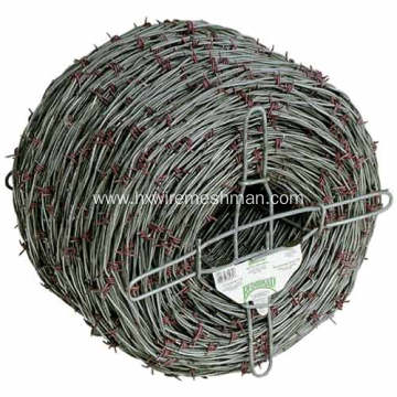 Galvanized Anti-Theft Barbed Wire