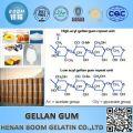 Gellan Gum usado em Antwork